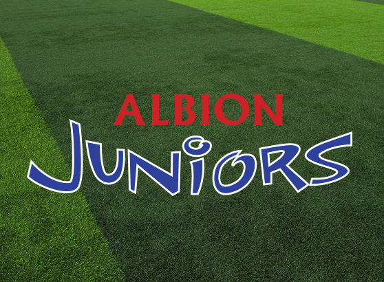 Albion Juniors